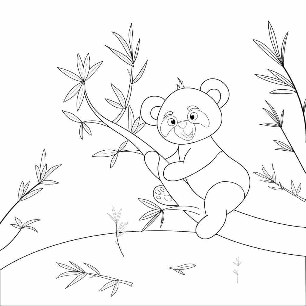 Omalovánka Panda na stromě